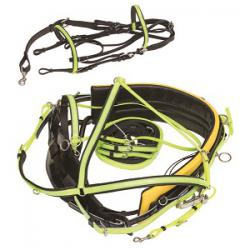 Deluxe Harness w/Beta Padded Buxton