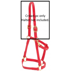 Replacement crown for the Beta Halter
