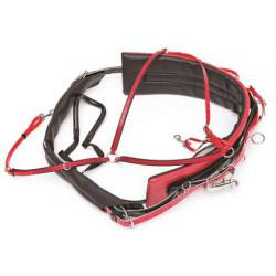 Standard Harness w/Beta Buxton